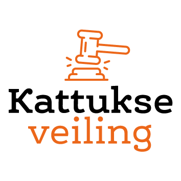veiling.vvkatwijk.nl